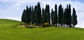 Offers for holidays in Volterra